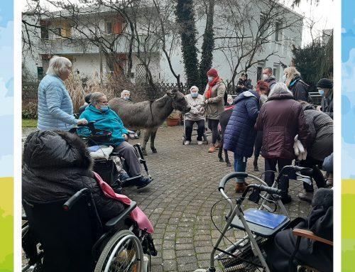 Tierischer Besuch im Haus am Sodenmattsee 1 in Bremen!