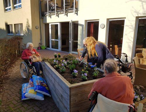 "Frühlingshafte Grüße aus der Residenz-Gruppe Seniorenresidenz ""Kamphof"""