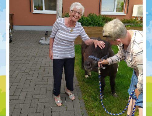 Tierischer Besuch in der Seniorenresidenz An den Meerwiesen