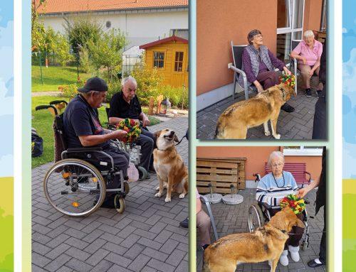 Hundebesuch in der Seniorenresidenz An den Meerwiesen